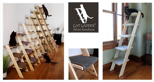 birch-cat-ladders