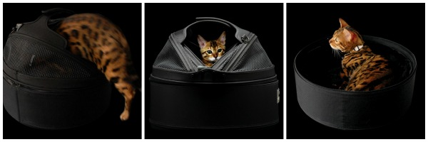sleepypod-carrier-bengal-cat