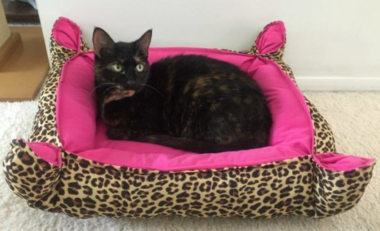 leopard-print-cat-bed-tortoiseshell-cat