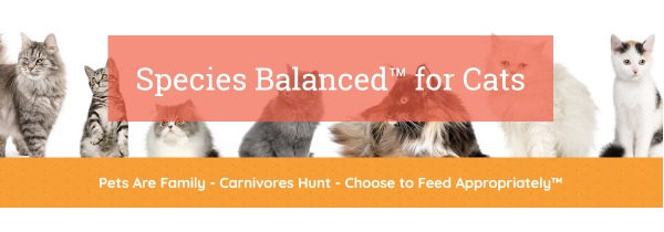 species-balanced-cat-food