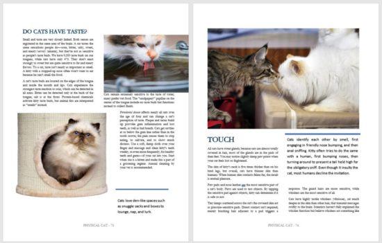 cat-life-book