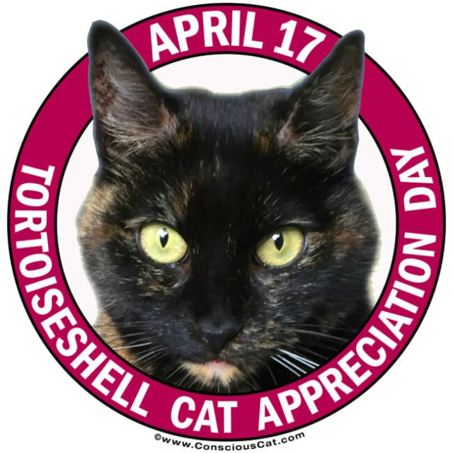 tortoiseshell-cat-appreciation-day
