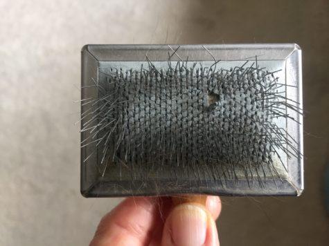 slicker-brush