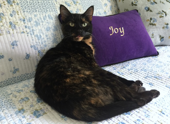tortoiseshell-cat-pillow-quilt