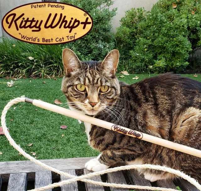 kittywhip-cat-toy