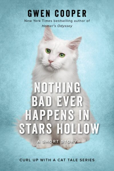 nothing-bad-ever-happens-in-stars-hollow