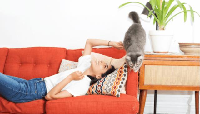 woman-sofa-cat