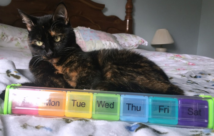pill-organizer