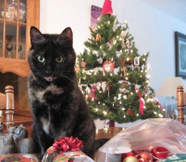 Ruby-christmas-tree