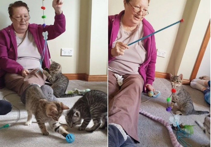 kittens-visiting-terminally-ill-woman