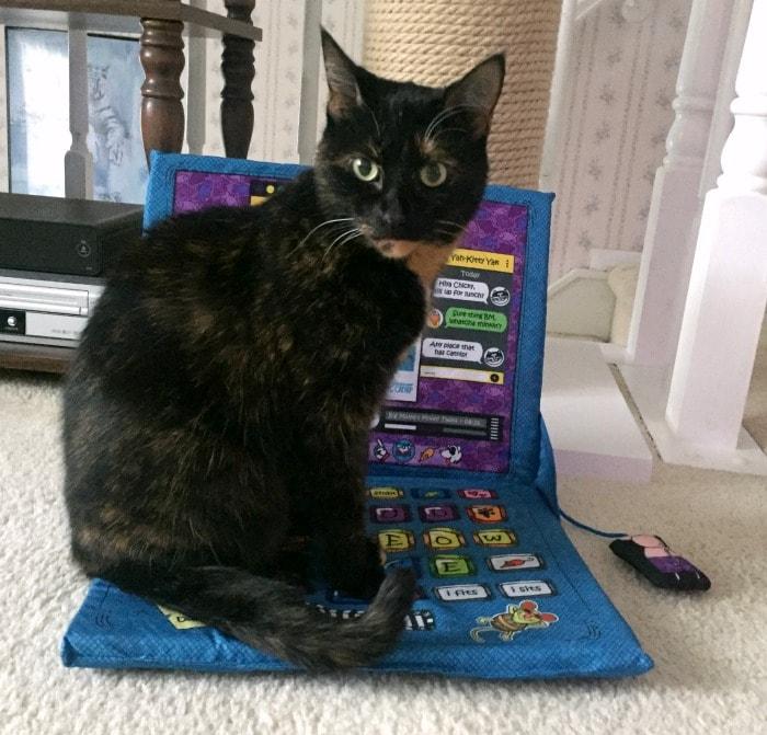 laptop-cat-mat