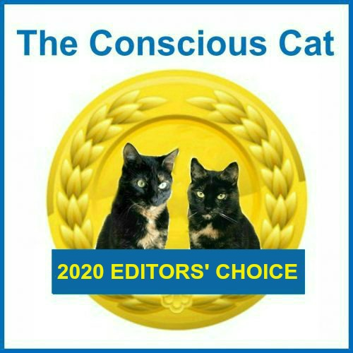 best-cat-products-2020