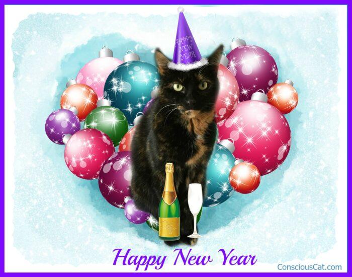 happy-new-year-cat