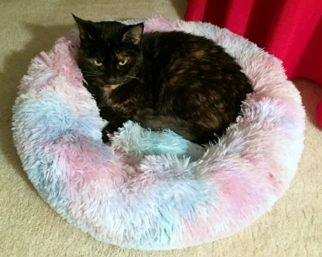 marshmallow-cat-bed