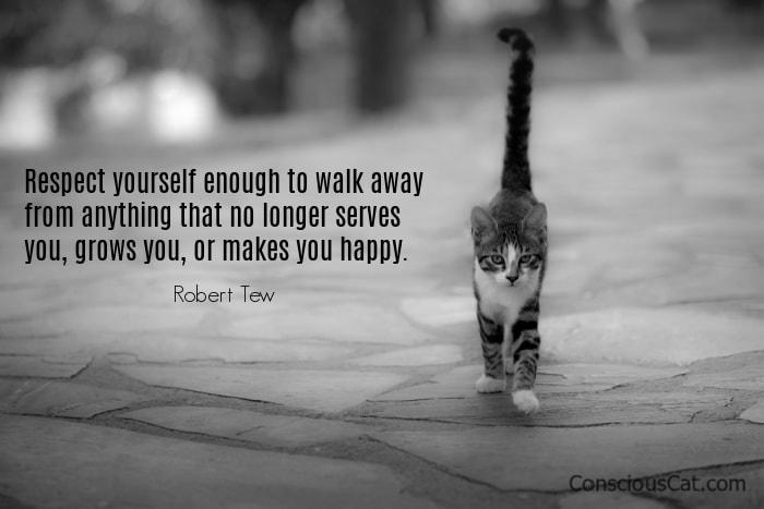 cat-walk-away
