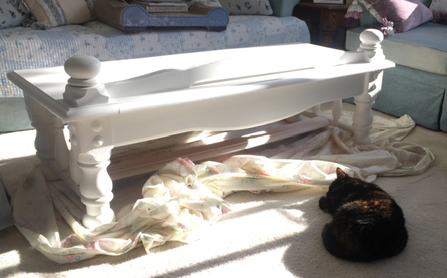 white-coffee-table-cat-sleeping