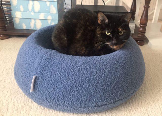 luxury-cat-bed