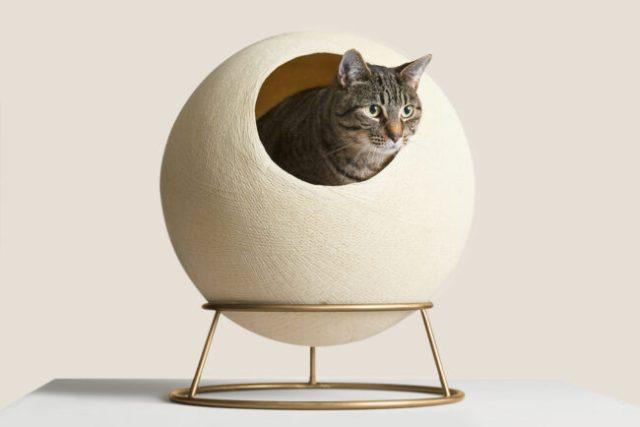 stellar-cat-bed