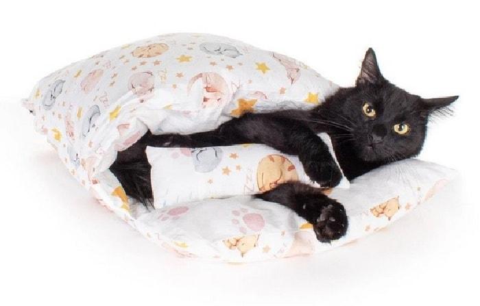 cat-sleeping-bag