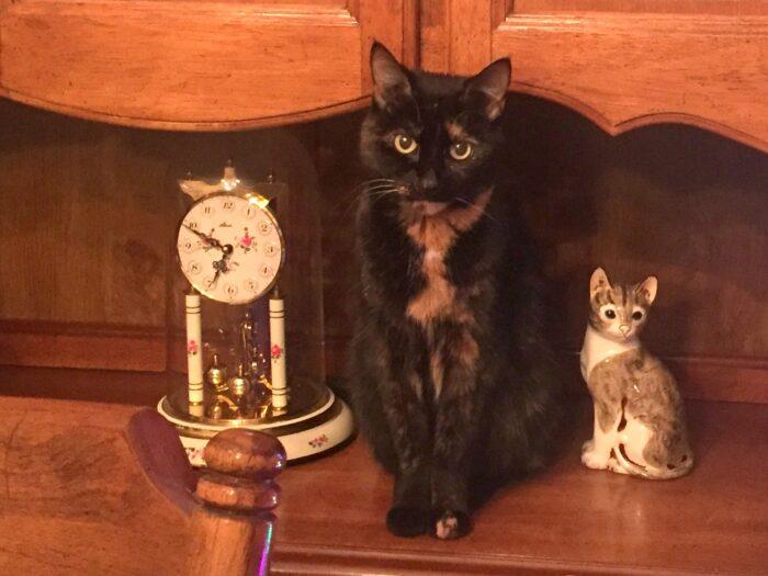 Allegra-cat-statue