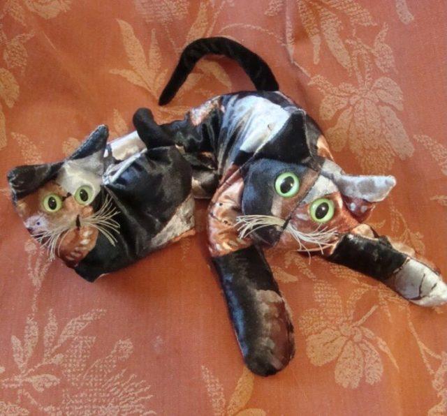 velvet-tortie-kitten-cat