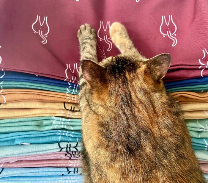 cat-pillow-colors