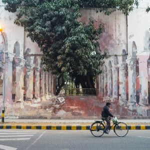 Sustainability in Indian culture. street art, Lodhi district, Delhi