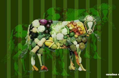 Conscious Charcha beginner's guide to veganism. Animal made from vegan produce