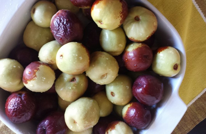 Pickins from the Tree – A Tale of Jujubes & Almonds
