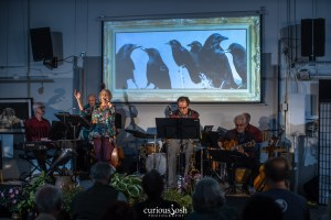 Jazz Aviary - Murder of Crows