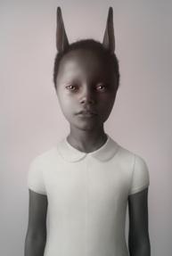 rabbit 2012
