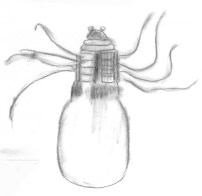 orb bulb spider