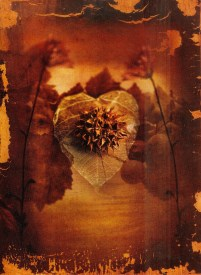 "Richard Tuschman 'Prickly Heart' (2003) 15""x11.25"""