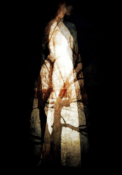 "Linda Plaisted'Milady' (2013), Photographic Mixed Media, 16 x 20"""