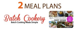 2_meal_plans