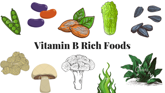 Graphic showing the top plant-based vitamin B rich foods which are peas, legumes, almonds, romaine lettuce, sunflower seeds, peanuts, mushrooms, broccoli, seaweed and spinach.