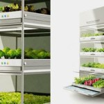 5 New Solutions For Growing Healthy Produce Indoors