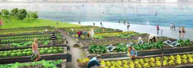 Compost Island Hubs – a Vision for NYC Waste Disposal