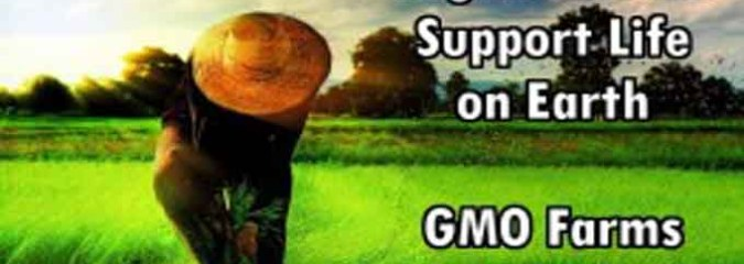 New Study: Organic Farms Support 34 – 43% More Species than GMO Farms