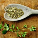 5 Health Benefits of Oregano Oil and How to Make It At Home