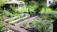 Garden-April-2014-03