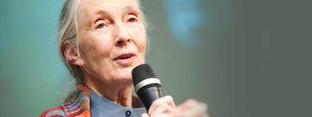 Jane Goodall: Governments Must Challenge Fossil Fuel Corporations