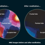 What Happens To Your Brain When You Meditate? A Neuroscientist Explains