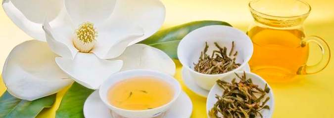 Nearly Forgotten Remedy for Cancer and More: Essiac Tea