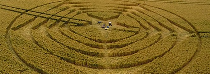 Amazing Star Crop Circle Appears on July 3, 2014 in East Sussex, U.K.