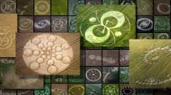 crop-circles-messages-in-fields