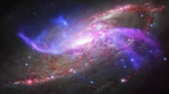 Galaxies like M106 are not emitting enough light to produce the levels of ionised hydrogen that scientists have spotted Photo: REUTERS/Nasa