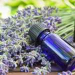 Rosemary and Lavender Essential Oils Proven to Boost Mood and Memory