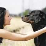 CLN RADIO – The Wonders of Animal Communication