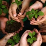 AmpleHarvest: How Home Gardeners Can Change the Local Food System (and Feel Happier)